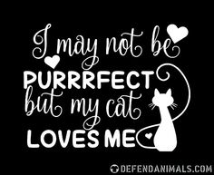 I may not be perrrfect but my cat loves me Cat Quotes, Animal Quotes, Sign Quotes, Dog Cat, Baby Cats, Baby Kitty, Kitty Kitty, Cat Signs, Gatos