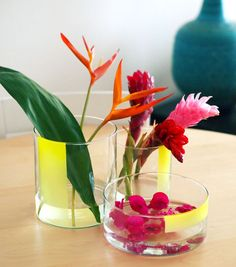 DIY: Graphic Neon Vase Happy Mundane + Justina Blakeney