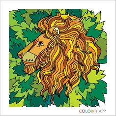 African Lion made by Superizzypowers via app colorfy