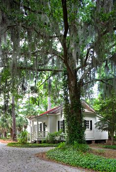 1/7 Our Town Plans - Peachtree Architects 775 sq.ft. (conditioned) + 262 sq.ft. (unconditioned, ie porches, screened/covered)