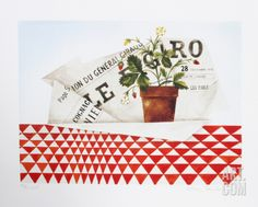 Strawberry Plant and Figaro Limited Edition by Mary Faulconer at eu.art.com