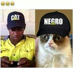 videoswatsapp.com imagenes chistosas videos graciosos memes risas gifs chistes divertidas humor http://ift.tt/2jdar20