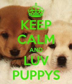 """Keep calm and """"luv"""" puppys 