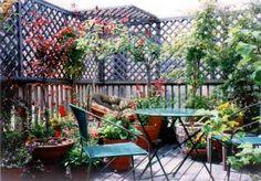 another rooftop garden idea