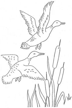 ducks for string art / would be nice for pyrography Animal Coloring Pages, Colouring Pages, Adult Coloring Pages, Coloring Books, Wood Burning Patterns, Wood Burning Art, Wood Burning Projects, Hand Embroidery Patterns, Embroidery Designs