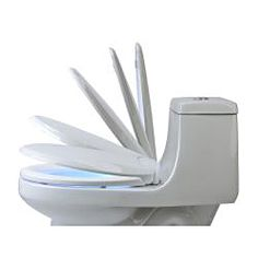 LumaWarm Heated Nightlight Toilet Seat (ok,everything I've ever wanted.... warm seat and a light to guide you to it.) LOL