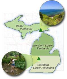 Roadside Parks Map: Cut River Park and  Bellamy Creek Park shown