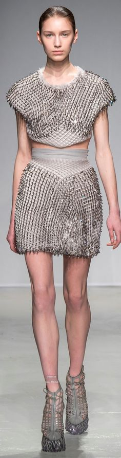 Iris van Herpen Collections Fall Winter 2015-16 collection
