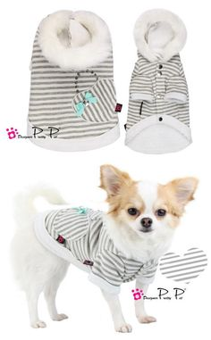 PUPPY LOVE COUTURE