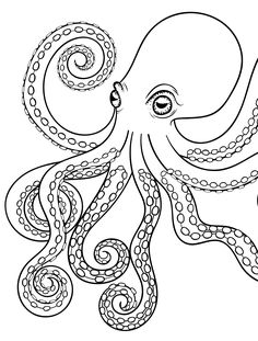 Octopus Adult Coloring Pages Free - Coloring For Kids 2019 Coloring Book Pages, Printable Coloring Pages, Coloring Sheets, Ocean Coloring Pages, Octopus Drawing, Octopus Art, Octopus Outline, Octopus Painting, How To Draw Octopus