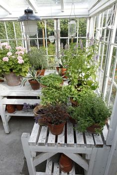 >>Visit the webpage to read more on how to build a greenhouse. Click the link to find out more~~~~~~ The web presence is worth checking out. Build A Greenhouse, Greenhouse Gardening, Greenhouse Ideas, Greenhouse Tables, Greenhouse Shelves, Window Greenhouse, Homemade Greenhouse, Portable Greenhouse, Le Hangar