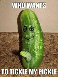 I bet someone bought that pickling cucumber simply because of it's unfortunate anatomic eruption. If they picked it from their garden. . .well. . .ewww.  Pervy garden!