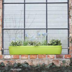 Der windowgreen Fensterbank-Blumenkasten wird einfach auf die Fensterbank…