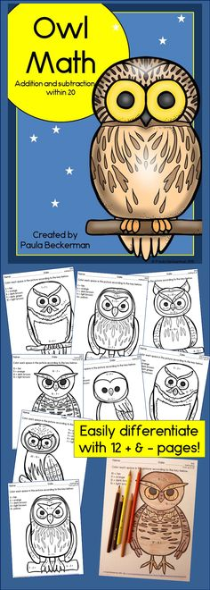 Addition and subtraction to 20 take on a fall theme in Owl Math!  Your first grade students will enjoy these color by number owl themed pages, while practicing important math skills.  There are 6 addition and 6 subtraction worksheets, with an answer key provided.  TpT $