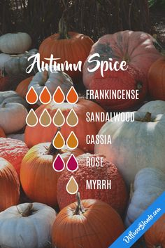 Autumn Spice Diffuser Blend