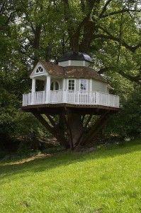 Casa sull'albero in legno architettura natura design