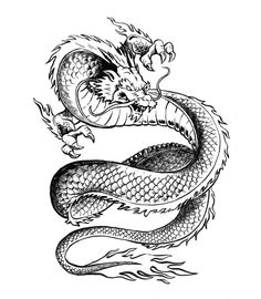 Japanese Dragon by sketchmarcks