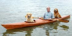Man Builds A Special Kayak To Take His Dogs On Little Adventures