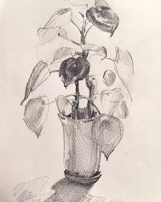#art #drawing #sketch #sketchbook by Sarah Sedwick 2015