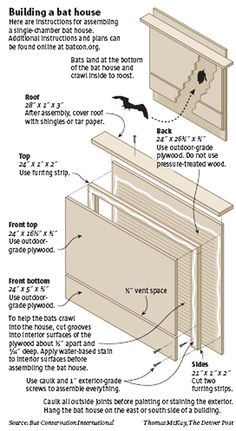 How to build a bat house. Bats are a great way to get rid of mosquitoes. How to build a bat house. Bats are a great way to get rid of mosquitoes. Build A Bat House, Bat House Plans, Bird House Kits, Owl House, Bat Box Plans, House Building, Woodworking Plans, Woodworking Projects, Welding Projects