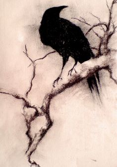 crow on branch by mariasart1.deviantart.com on @deviantART