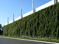 Greenroofs.com Projects - One Premier Place