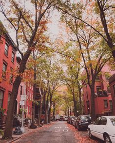 "Brooklyn Heights New York: """"Autumn is the hardest season. The leaves are all falling, and they're falling like they're falling…"""