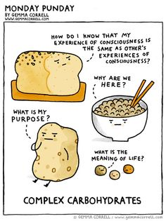 Monday Punday. Your purpose, Mr Potato, is to be made into delicious chips so that I can eat you and all of your friends.