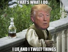 """AND I TWEET VERY STUPID THINGS.  AND IF SOMEONE SAYS SOMETHING ABOUT ME I CRY """"NOT FAIR""""! LIKE THE 10 YEAR OLD THAT I REALLY AM."""