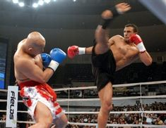Google Image Result for http://www.mmabay.co.uk/wp-content/uploads/2011/09/Badr-Hari1.jpg