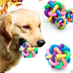 Fasterfish(TM) Pet Dog Puppy Colorful Dental Teething Healthy Teeth Chew Training Play Ball Toy ** Check this awesome product by going to the link at the image. (This is an affiliate link) #DogToyBalls