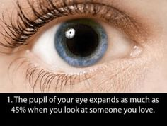 Eye-Popping Fun Facts About Your Eyes To Pleasantly Overwhelm You With New Knowledge Use those eyes of yours and read these facts about em.Use those eyes of yours and read these facts about em. Fun Facts About Love, Fun Facts About Yourself, Love Facts, Wtf Fun Facts, Crazy Facts, Useful Facts, Strange Facts, Random Facts, Random Stuff