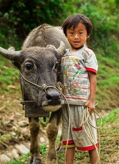 Vietnam #world #cultures