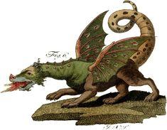 Amazing Vintage Dragon Image - Rare! - The Graphics Fairy