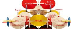 From an accounting perspective, IT eWave Payroll system is crucial because payroll and payroll taxes considerably affect the net income of most companies and they are subject to laws and regulations