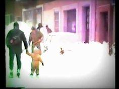 Lausanne 1985 neige du siècle