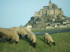 De Paris ao Mont Saint Michel via Saint Malo – 2