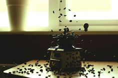 Escaping the grinder by T-K-D, via Flickr