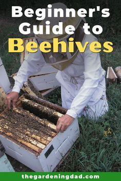 Learn How to Make a Beehive in 8 Simple Steps with this Beginner's Guide to Beehives! This is the ultimate guide if you want to DIY a beehive or buy a kit!