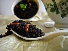 nandangwuyung: CHOCOLATE SOIL WITH WORMS