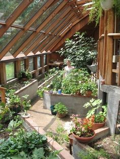 Growing food indoors and heating the house with passive solar heat. #greenhouse - Sirius EcoVillage http://www.greenhouseslovers.com/shop/ #conservatorygreenhouse