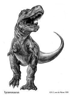 Tyrannosaurus rex by WillemSvdMerwe on DeviantArt