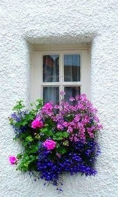 house flower boxes 389139224031602809 - Beautiful window box Source by Flower Window, Pot Jardin, White Building, Garden Windows, Cottage Windows, Window Boxes, Window Sill, Flower Boxes, Dream Garden