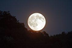 Meditación de Luna Llena, La Aceptación. Descarga y escucha la meditación guiada de Luna Llena del 14 de noviembre de 2016. Más información: http://www.reikinuevo.com/meditacion-luna-llena-aceptacion/