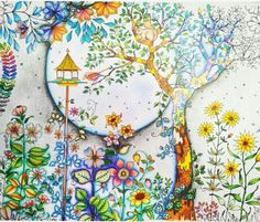 11 Best Secret garden coloring book inspirations images | Coloring ...