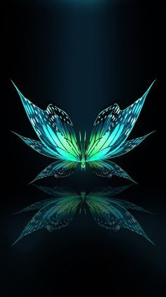 Butterfly design, a green butterfly that admires itself in a reflection, design, graphic Butterfly Drawing, Butterfly Painting, Butterfly Wallpaper, Butterfly Design, Colorful Wallpaper, Galaxy Wallpaper, Wallpaper Backgrounds, Green Butterfly, Phone Wallpapers