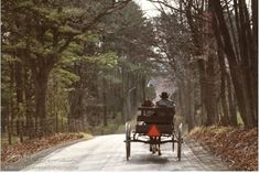 Amish Buggy - The horse and buggy are being driven on a country road.  This scene is common in many farming communities.