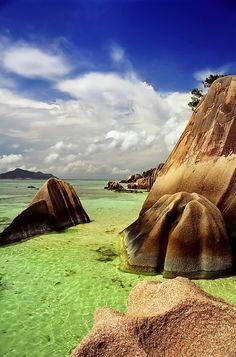 Beautiful Fauna &Flora - Anse Source D'Argent,Seychells