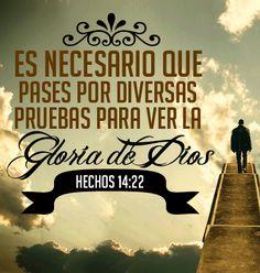 Es necesario que pases por diversas pruebas para ver la Gloria de Dios