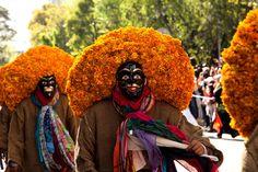 Day of the dead, Flowers and costumes. Con flores de cempasuchil, color y trajes tradicionales, se celebr� el D�a de Muertos con un desfile en la Ciudad de M�xico